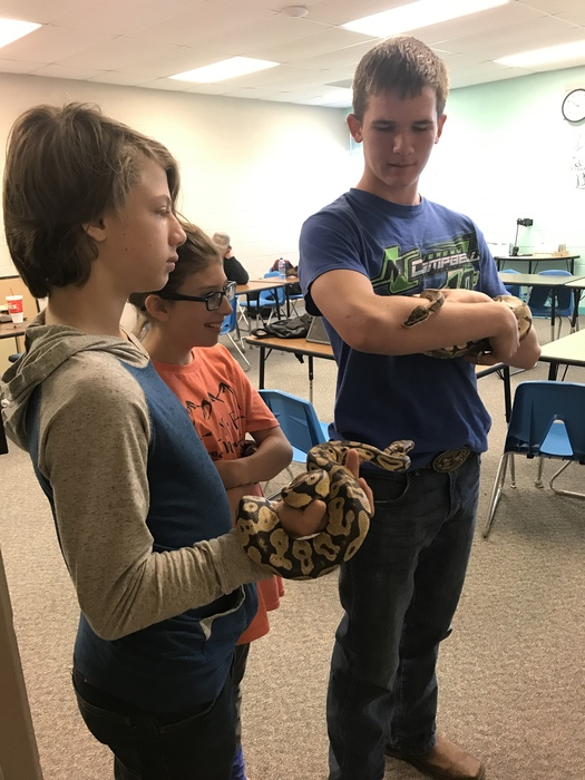 Snake show and tell